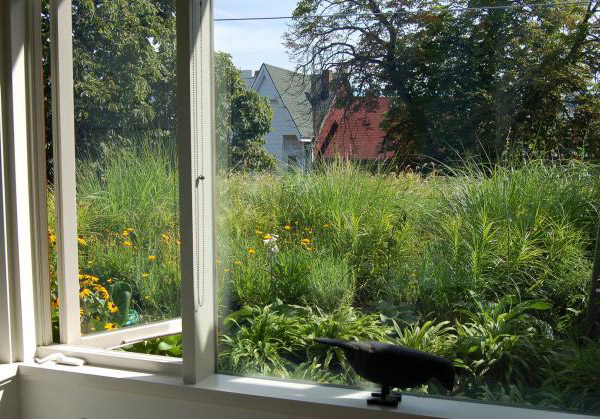 Backyard Urban Garden Toronto : Garden off the bedroom? not a bad view to wake up to in the morning